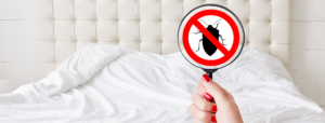 Protect Your AC Unit from Bugs